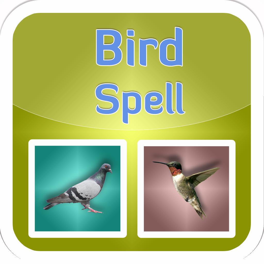 Puzzle + Bird Spell Puzzle